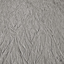 Sands of Tide 2 by Jonathan Route - Abstract Patterns