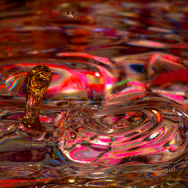 Colorful Reaction by Janet Lyle - Abstract Water Drops & Splashes ( water, splash, colors, droplets )