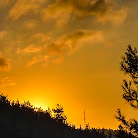 Hot sunset by Robert Namer - Landscapes Mountains & Hills ( forests, clouds, hills, mountains, sunset, sundown, trees, cloudscape, cloudy, landscapes )
