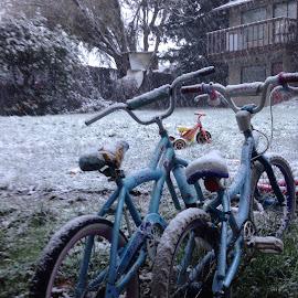 Bikes  by Lim Jaya - Transportation Bicycles ( #snowing #kids #bike #pair #bw #bwchallange #cold #toys outdoor )