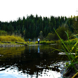 Calm before the catch by Dimitri Rebich - Nature Up Close Water (  )