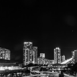 Gold Coast Skyline by Jukka Heinovirta - City,  Street & Park  Skylines ( building, black and white, street, white, travel, scenic, house, space, city, oceania, tower, skyscraper, gold coast, australia, outdoors, air, night, town, high, travel destinations, light, black, river )