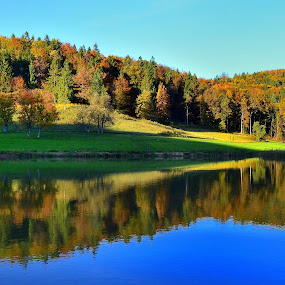 Autumn reflections by Silva Predalič - Landscapes Waterscapes ( autumn, colors, reflections, forest, lake, fall, color, colorful, nature,  )