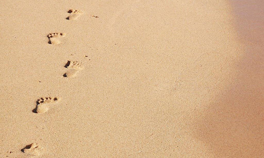 Footprints Wallpapers - screenshot