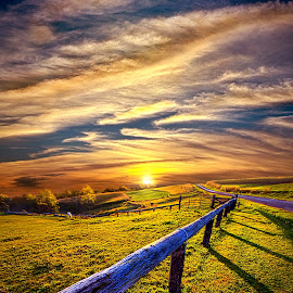 On The Brighter Side by Phil Koch - Landscapes Prairies, Meadows & Fields ( vertical, photograph, fine art, yellow, travel, leaves, love, pasture, sky, tree, nature, autumn, flowers, flower, orange, twilight, agriculture, horizon, portrait, fence, environment, dawn, season, serene, outdoors, trees, floral, inspirational, natural light, wisconsin, ray, horses, horse, landscape, phil koch, spring, sun, photography, blue sky, rail, horizons, inspired, office, clouds, park, green, back light, scenic, morning, shadows, wild flowers, field, red, blue, color, sunset, peace, fall, meadow, landscapephotography, beam, earth, sunrise, landscapes, mist,  )