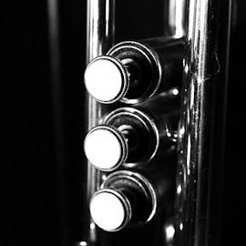 The Trumpet by Steve Molter - Artistic Objects Musical Instruments ( music, keys, black and white, trumpet )