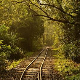 by Yogesh Waikul - Transportation Railway Tracks
