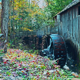 Cades Cove Grist Mill by Chuck Hagan - Buildings & Architecture Public & Historical