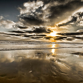 Straight On Til Morning by Kam Minatrea - Landscapes Beaches ( clouds, sunset, seaweed, ocean, beach )