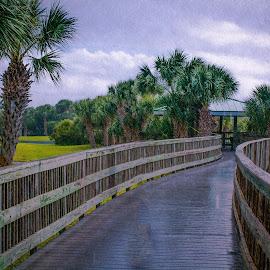 Rainy day by Natalya Polichtchouk - Landscapes Weather ( rain  florida )