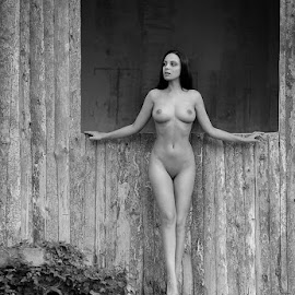 M by Kalin Kostov - Nudes & Boudoir Artistic Nude ( nude, wood, woman, forest, hair, people, women )