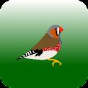VogelMarkt.net icon