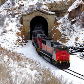 by Dennis Robertson - Transportation Trains