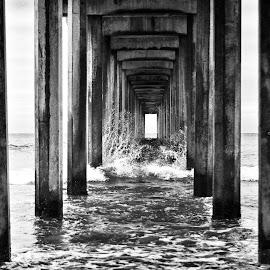 Pier by Taylor Sanderson - Landscapes Beaches ( san diego, black and white, california, pier, ocean, seascape, beach, landscape, b&w )