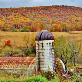 by Karen Jaffer - Landscapes Prairies, Meadows & Fields