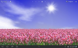 Screenshot of Tulip Field Free