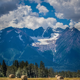 Summer Fields by Gail Jones - Landscapes Prairies, Meadows & Fields ( clouds, mountains, hay, bales, summer )