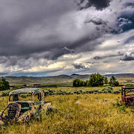 Pair in a Pasture by Nancy Young - Transportation Automobiles ( truck, dillon, 2014, automobile, montana, rusty, transportation )