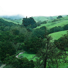 Spring Green in SOuthern California by B l  Beirne - Digital Art Places ( hwy 46, southern california, spring, springtime, hills and trees,  )