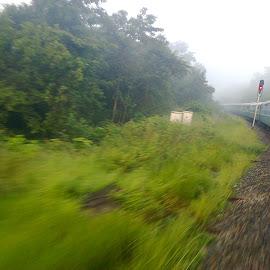 curving through by Siddharth Srinivasan - Transportation Trains ( curving, green, train )