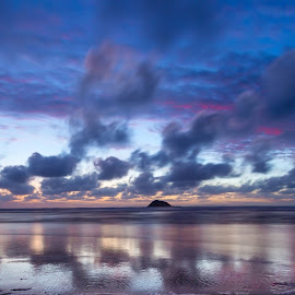 Blue hour over Maori bay (Auckland / New Zealand)  by Thomas Schmutz - Landscapes Sunsets & Sunrises ( blue hour, sunset, maori bay, landscape, new zealand,  )