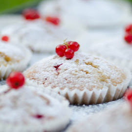 Muffins by Marek Kargier - Food & Drink Cooking & Baking