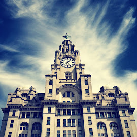 Liver Building by Neal Dawson - Buildings & Architecture Office Buildings & Hotels ( liverpool, architecture, landscape )