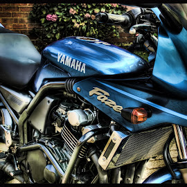 Set Fazers to Stun! by Jean-Paul Srivalsan - Transportation Motorcycles ( colour, hdr, motorbike, transport, motorcycle )