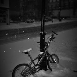 Snowed In by Brant Stevenson - Transportation Bicycles