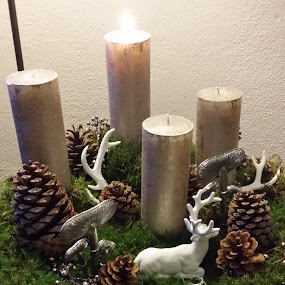 Advent Wreath by Joe Harris - Public Holidays Christmas ( holiday, advent, candles, christmas, wreath, decorations )