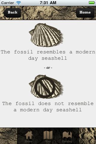 Fossilator