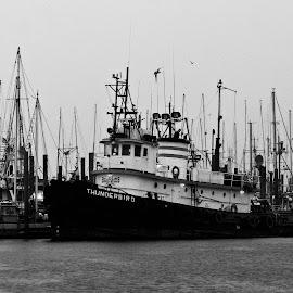 Fishing boat at dock in Sitka, Alaska by Dan Dusek - Transportation Boats ( black and white, harbour, boats, transportation, fishing boat,  )