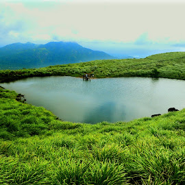 Mountain Lake by Shameer Kamarudheen - Landscapes Prairies, Meadows & Fields ( top of mountain, lake, green grass )