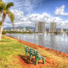 Ala Moana Park view by Leah Varney - City,  Street & Park  Vistas ( water, buildings, trees, beach )