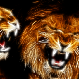 Roaring Lions by Craig Eccles - Digital Art Animals ( big cat, lion, cat, lioness, digital art, digital, roaring )