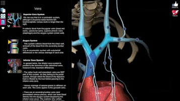 Screenshot of AnatomyLearning - 3D Atlas