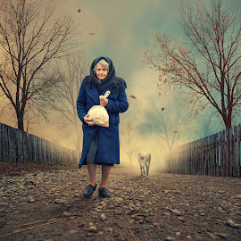 The follower by Caras Ionut - Digital Art People ( ioana, carasdesign, paper, land, writing, children, rock, landscape, birds, sun, city, caras ionut, psd, mounting, poem, light, top, clouds, hill, tutorials, building, letter, beautiful, cliff, manipulation, observer, dove, roof, fly )