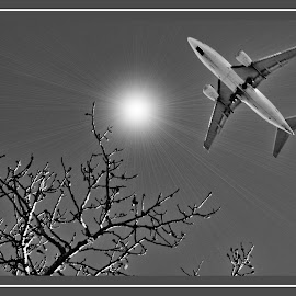 by Ray Sweeting - Transportation Airplanes