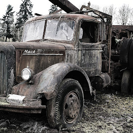 Old Logging Truck by Lee Gochenour - Transportation Automobiles ( old, vintage, log truck, antique, rustic, deserted )