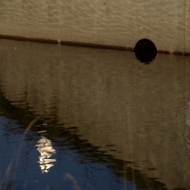 Exercise In Light And Angles by Tim Murphy - Abstract Patterns ( angles, water, underpass, reflections, circle, bridge, concrete )