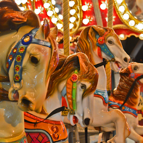 Merry-Go-Round Horses by Peter Murnieks - Artistic Objects Other Objects ( music, street fair, merry, horses, street, festival, round, fun, fair, go,  )
