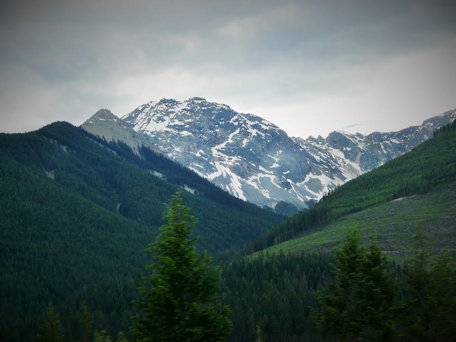 Rocky  Mountains;Canada by Thakkar Mj - Landscapes Mountains & Hills ( mountain, canada, nature, snow, rock,  )