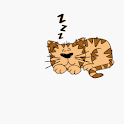 Some Serious Sleeping Live WP icon