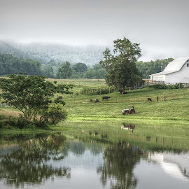 Americana by Vicky Burney - Buildings & Architecture Other Exteriors ( farm, ponds, barn, tennessee, landscapes, country,  )