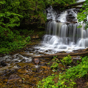 Wagner Falls by Flora Ehrlich - Landscapes Waterscapes ( waterfalls, america, wagner, green, tourism, beauty, flow, travel, paradise, rivers, michigan, upper, color, serenity, peace, falls, landscapes, peninsula )