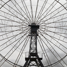 Ferris Wheel LInes by Pamela Howard - Abstract Patterns ( ride, wheel, adelaide, show, lines, ferris wheel )