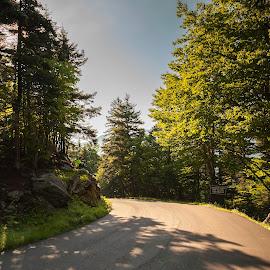 Mt. Washington Auto Road by Matt Weaver - Landscapes Travel ( washington, mount, mt, nh, road, sunlight, new hampshire )