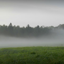 Land of the fog.... by Gail Singer - Landscapes Prairies, Meadows & Fields