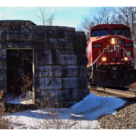 Train by Peter Campbell - Transportation Trains ( nature, creative, art, train, tracks, outside )