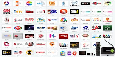 Screenshot of Giniko Turkish TV for GoogleTV